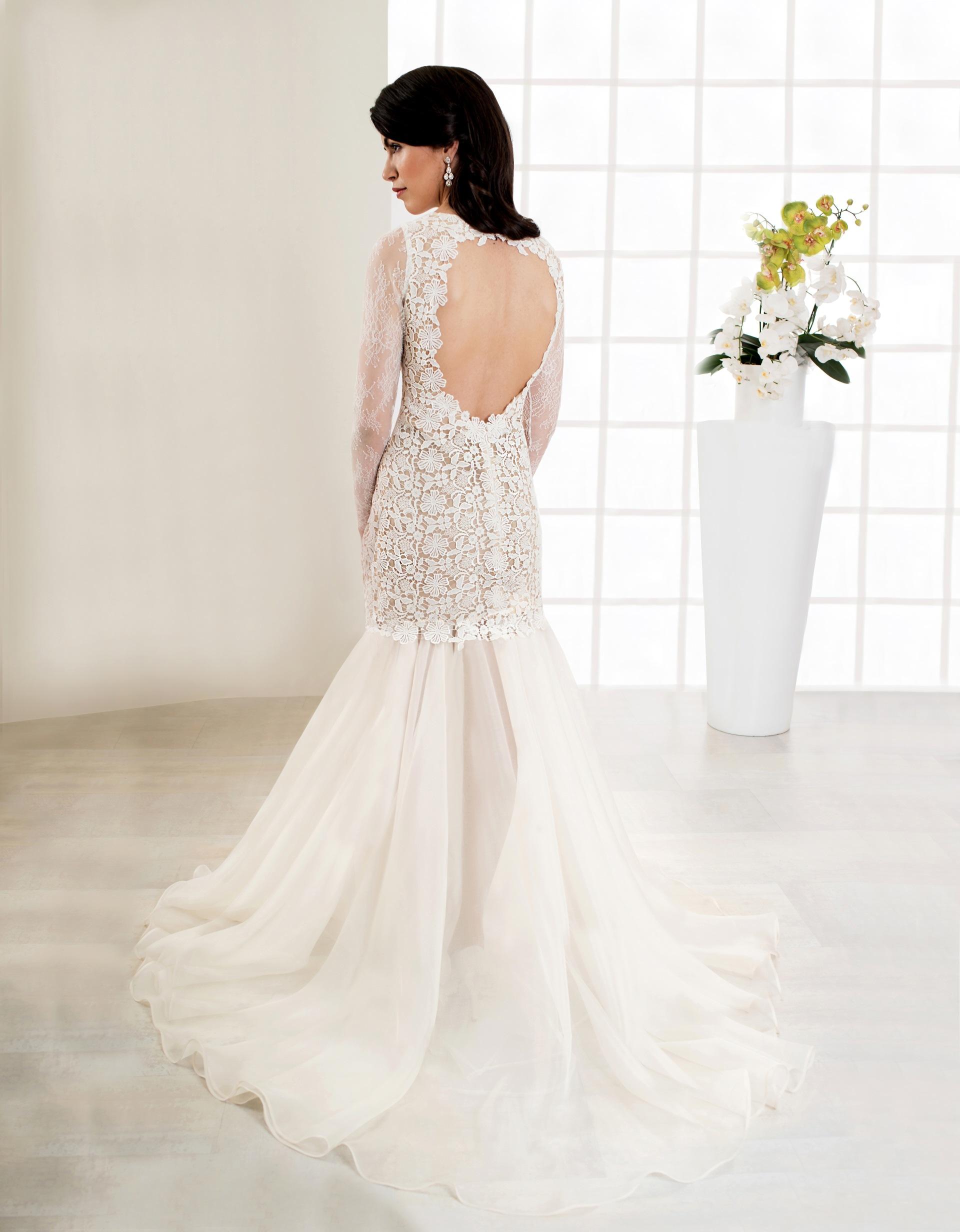 Langes Brautkleid mit Spitze, tiefem Rückenausschnitt und langen Ärmeln Rückenansicht